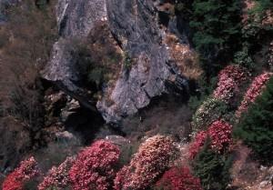 national parks nepal 01
