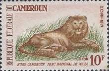 Cameroon - 1964 - Waza National Park – Lion (Panthera leo)